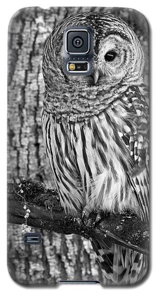 Blending In - 365-187 Galaxy S5 Case by Inge Riis McDonald