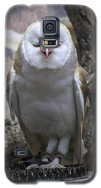 Blinking Owl Galaxy S5 Case
