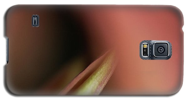 Bliss Galaxy S5 Case