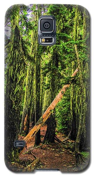 Blocked Trail Galaxy S5 Case