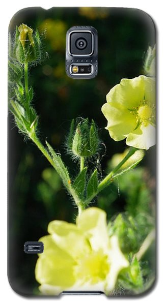 Bloomin Happy 1 Galaxy S5 Case