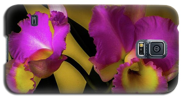Blooming Cattleya Orchids Galaxy S5 Case