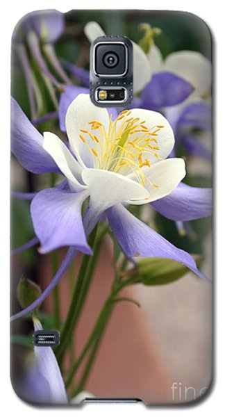 Galaxy S5 Case featuring the photograph Blooming Columbine by Andrew Serff