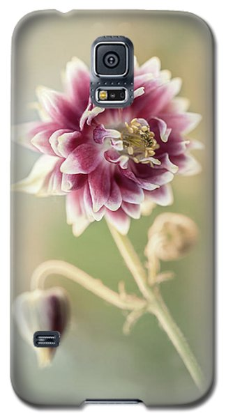 Blooming Columbine Flower Galaxy S5 Case