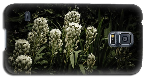 Galaxy S5 Case featuring the photograph Blooming In The Shadows by Marco Oliveira