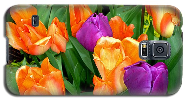 Galaxy S5 Case featuring the photograph Blooming Multitude by Lynda Lehmann
