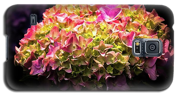 Blooming Pink Hydrangea Galaxy S5 Case by Onyonet  Photo Studios