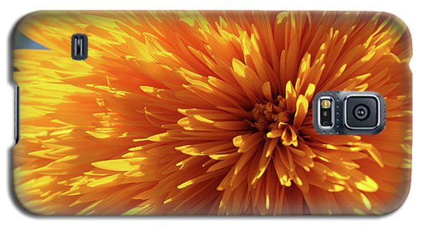 Galaxy S5 Case featuring the photograph Blooming Sunshine by Marie Leslie