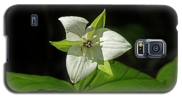 Galaxy S5 Case featuring the photograph Blooming Trillium by Mike Eingle