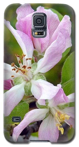 Blossom Duet Galaxy S5 Case
