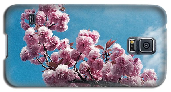 Galaxy S5 Case featuring the photograph Blossom Impressions by Gwyn Newcombe