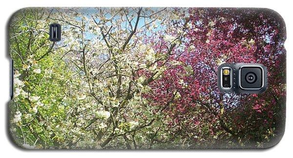Blossom Trio Galaxy S5 Case by Judith Desrosiers