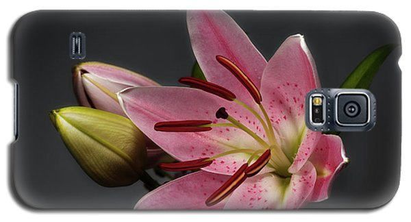 Blossoming Pink Lily Flower On Dark Background Galaxy S5 Case