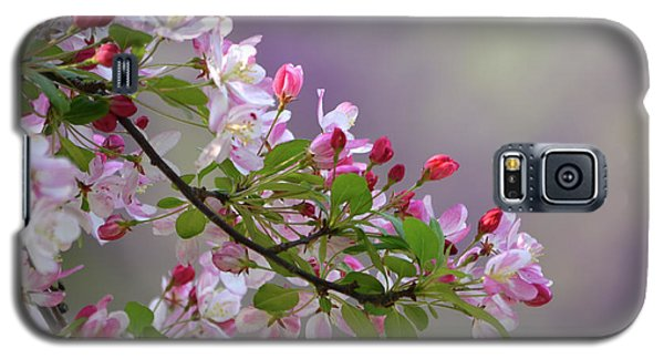Galaxy S5 Case featuring the photograph Blossoms And Bokeh by Ann Bridges