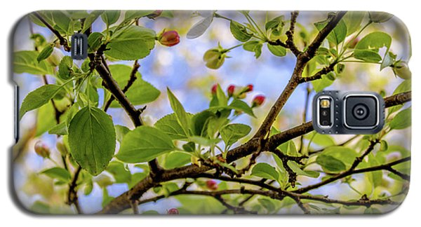 Blossoms And Leaves Galaxy S5 Case