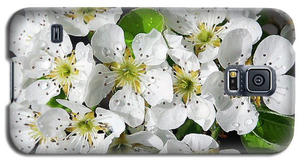 Galaxy S5 Case featuring the photograph Blossoms by Elvira Ladocki