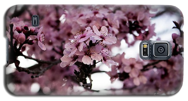 Blossoms Galaxy S5 Case