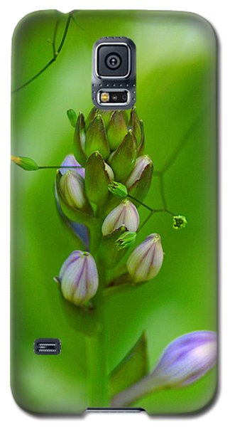 Galaxy S5 Case featuring the photograph Blossom Dream by Ben Upham III