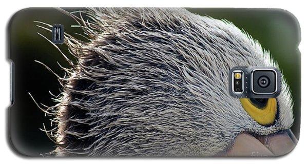 Blowin' In The Wind Galaxy S5 Case