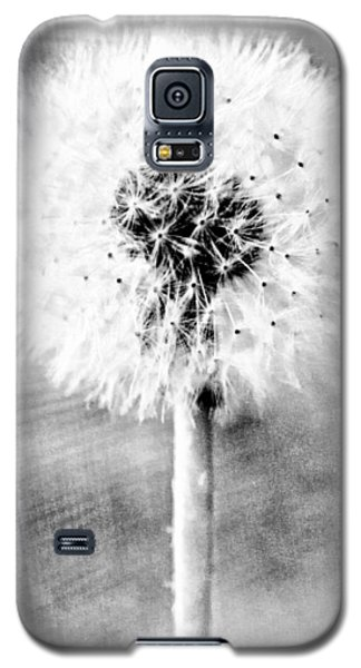 Blowing In The Wind Pencil Effect Galaxy S5 Case