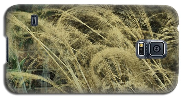 Galaxy S5 Case featuring the photograph Blowing In The Wind by Rick Friedle