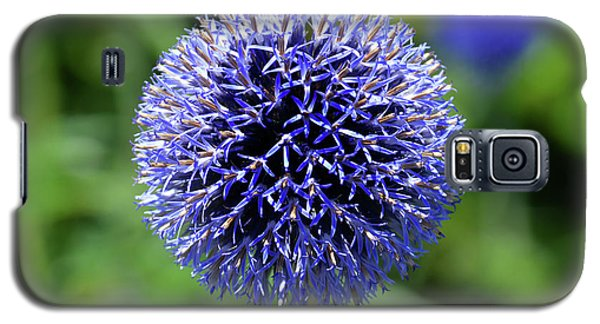 Galaxy S5 Case featuring the photograph Blue Allium by Terence Davis