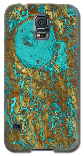 Blue And Gold Abstract Galaxy S5 Case