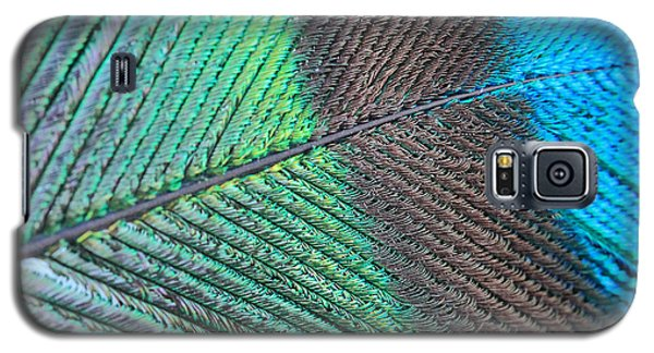 Blue And Green Feathers Galaxy S5 Case