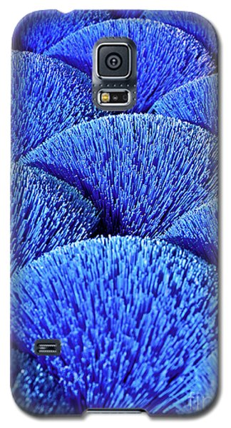 Blue Asia Sound Galaxy S5 Case