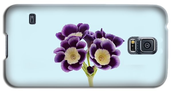 Galaxy S5 Case featuring the photograph Blue Auricula On A Transparent Background by Paul Gulliver