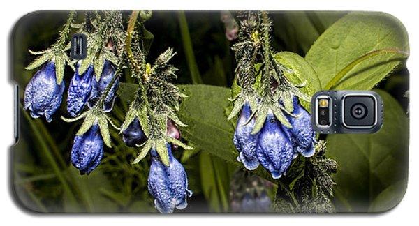 Blue Bells 2015 Galaxy S5 Case