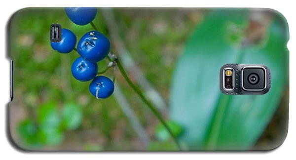 Blue Berries Galaxy S5 Case