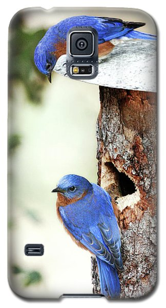 Blue Birds Are Moving In Galaxy S5 Case by Steven Llorca