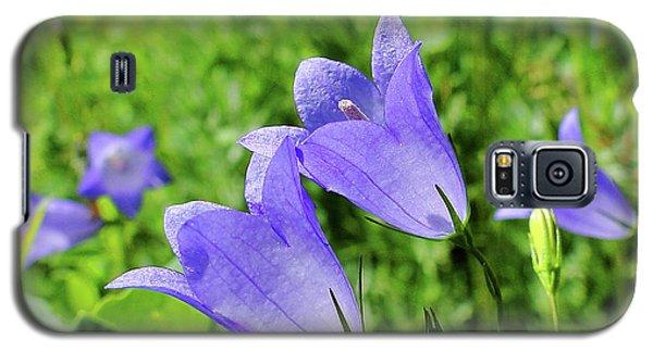 Galaxy S5 Case featuring the photograph Hairbell - Campanula Rotundifolia by Blair Wainman