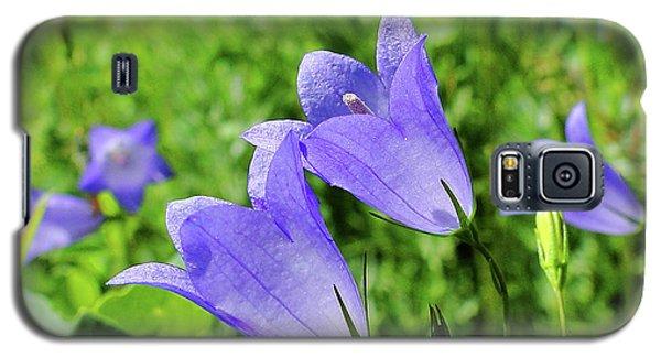 Hairbell - Campanula Rotundifolia Galaxy S5 Case by Blair Wainman