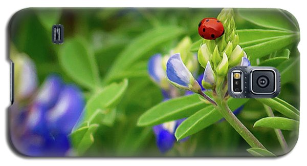 Texas Blue Bonnet And Ladybug Galaxy S5 Case