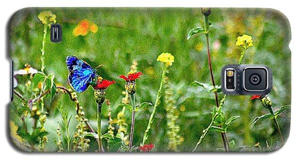 Blue Butterfly In Meadow Galaxy S5 Case