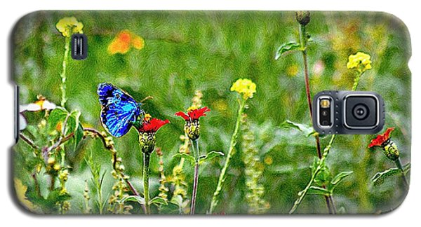 Blue Butterfly In Meadow Galaxy S5 Case