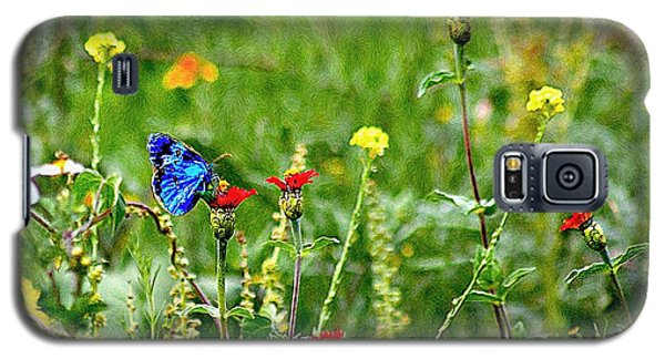 Galaxy S5 Case featuring the photograph Blue Butterfly In Meadow by John  Kolenberg