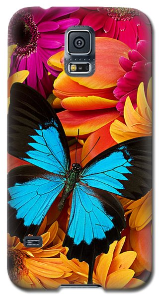 Blue Butterfly On Brightly Colored Flowers Galaxy S5 Case by Garry Gay