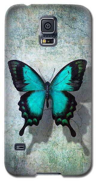 Blue Butterfly Resting Galaxy S5 Case