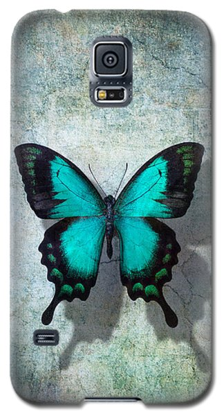 Butterfly Galaxy S5 Case - Blue Butterfly Resting by Garry Gay