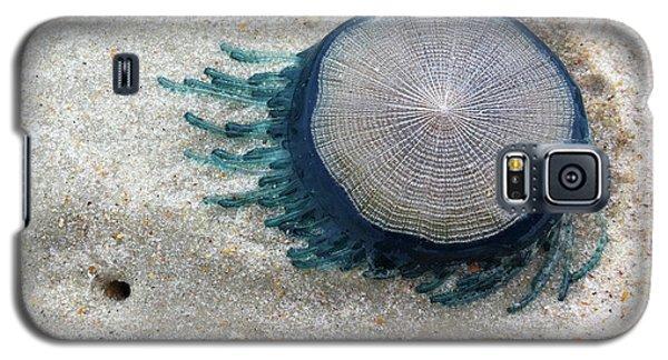 Blue Button #2 Galaxy S5 Case
