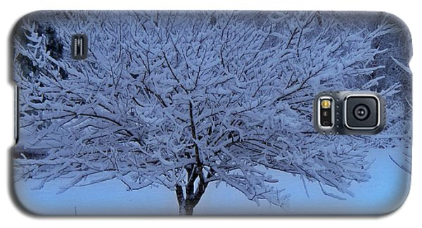 Galaxy S5 Case featuring the photograph Blue Christmas by Betty Northcutt