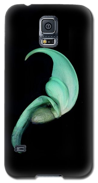 Blue Claw Galaxy S5 Case