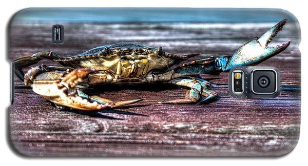 Blue Crab - Big Claws Galaxy S5 Case