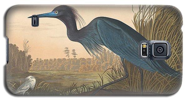 Audubon Galaxy S5 Case - Blue Crane Or Heron by John James Audubon