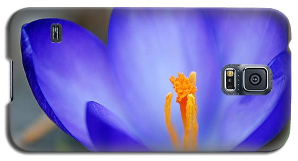 Blue Crocus Galaxy S5 Case