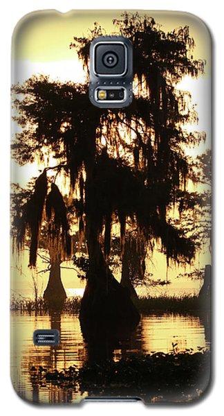 Blue Cypress Yellow Light Galaxy S5 Case