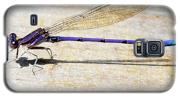Galaxy S5 Case featuring the photograph Blue Damselfly by Margie Avellino